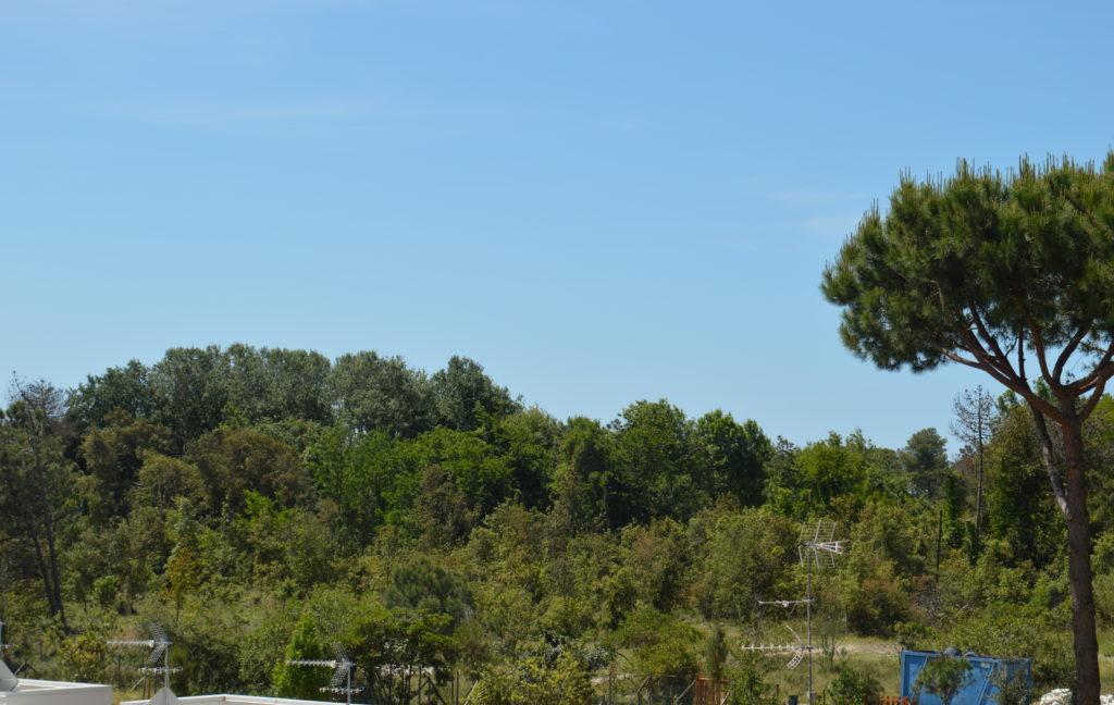 Appartamento 2° piano zona Lagomare a Torre del Lago (4)