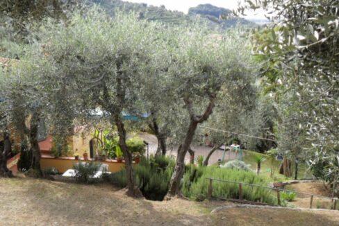 Villa con terreno in zona panoramica a Massaciuccoli (11)